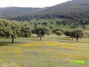 Finca La Sierra. Parque Nacional de Monfragüe