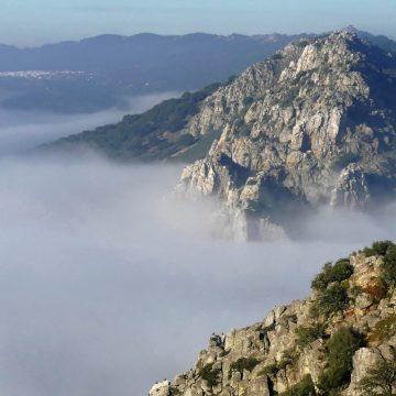 visita guiada monfrague plasencia salto gitano niebla naturs